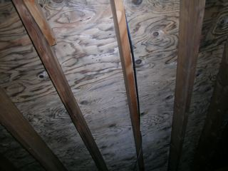 Mold Inspection Journal: 4-1-09