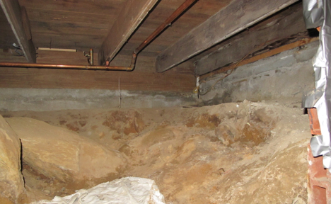 Mold and Dirt Floor Crawlspaces